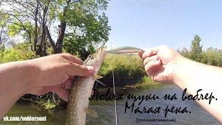Ловля щуки летом на малой реке. Твичинг воблеров минноу. Видео отчет от 8 августа 2016 г.