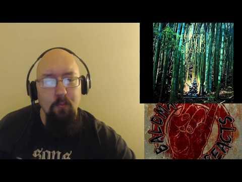 Dir En Grey Dum Spiro Spero Full Album reaction/ Opinion. No Track Audio. See my notes.