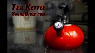 Tea Kettle Whistle Sound