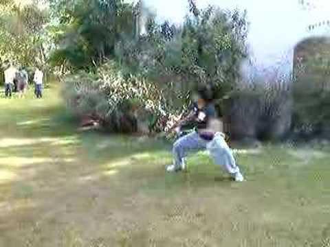 Felipe Machado- Wushu(kung fu) form Nangun free form