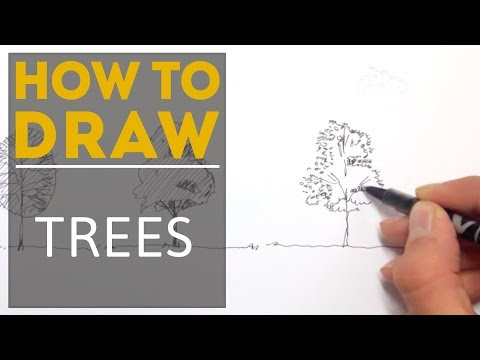 How to Draw a Tree with a Pen