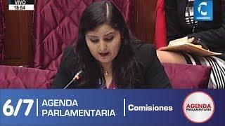 Sesión Comisión de Constitución 6/7 (12/06/19)