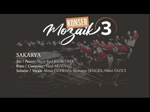 Sakarya- Mozaik 3 Konseri 21 Haziran 2019