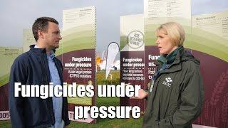 Fungicides under pressure