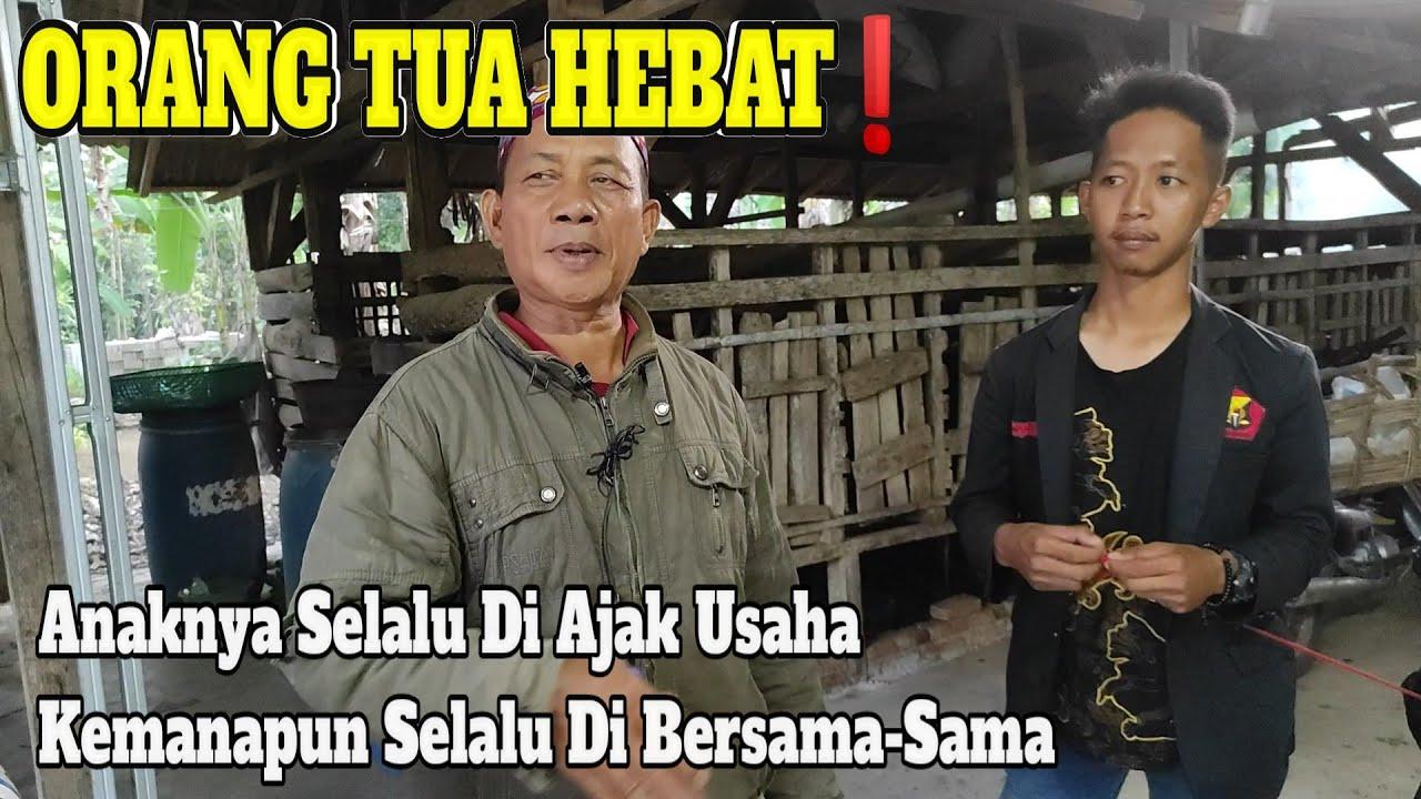 Pak Haji Bejo Sukses Mendidik Anak Usaha Kambing. (Orang Tua Hebat)