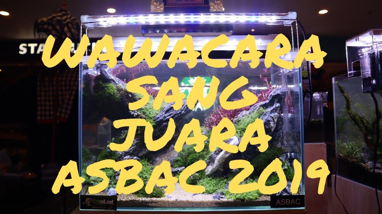 Interview sang juara kontes Aquascape Bali ASBAC 2019 #the ...