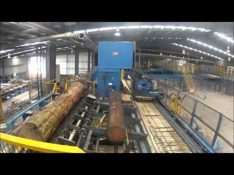 Sawmill Tasmania