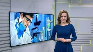 Вести-Уфа - 24.02.16(Информационный сайт ГТРК