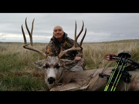 Huge mule deer bow hunt spot stalk in the rain south dakota huge mule deer bow hunt spot stalk in the rain south dakota archery mule deer how we stalk sciox Images