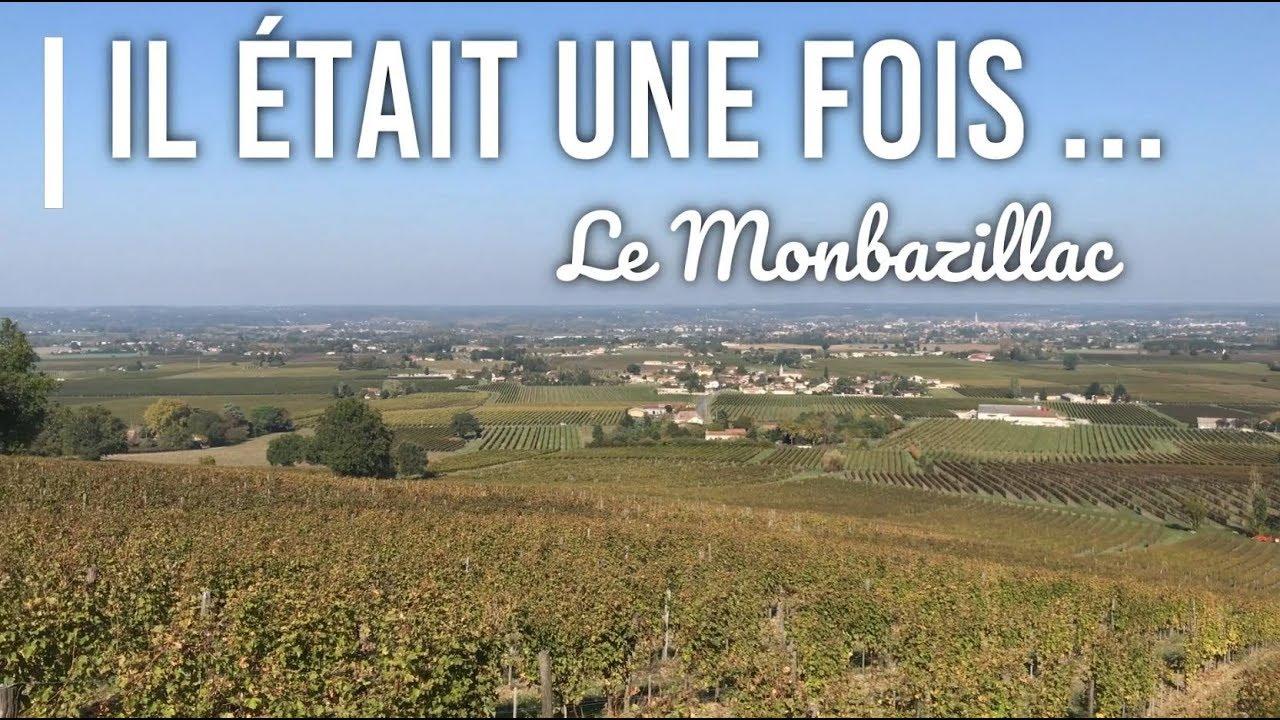 Les vendanges du Monbazillac, les secrets de ce vin...