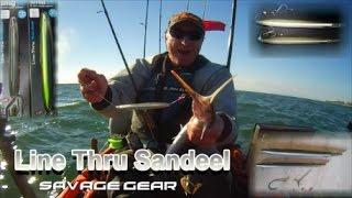 Savage Gear 3D Line Thru Sandeel video