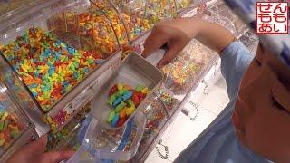 せんももお菓子をえらぶ Candy Shop thumbnail