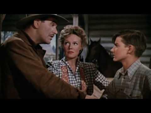 Thunderhead   Son of Flicka Western Family Film 1945  Roddy McDowall, Preston Foster & Rita Johnson