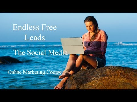 Endless Free Leads (Max Steingart) - Online Marketing Course Review