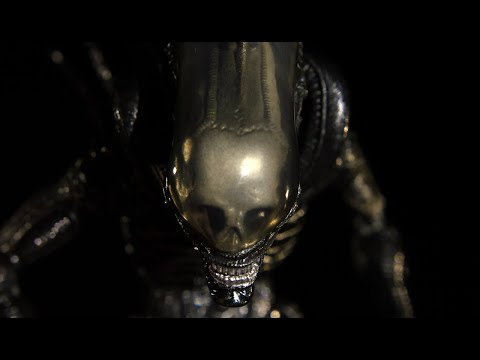 Why is the Xenomorph so Aggressive? streaming vf