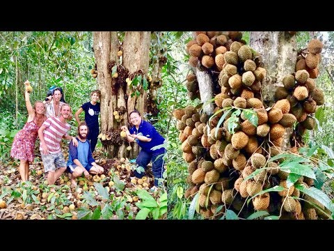 Fruit Hunters Finally Find Rarest Durian In The World!