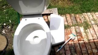 1993 Kohler Elongated Toilet Flushing