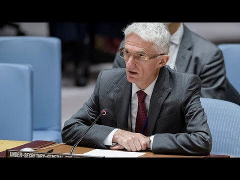 Humanitarian situation in Syria - briefing to UN Security Council (29 October 2018)