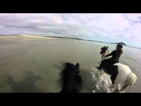 Beach gallop dont see Rodney for long!