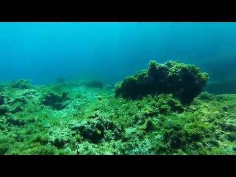 Diving in Cala Morts, Menorca