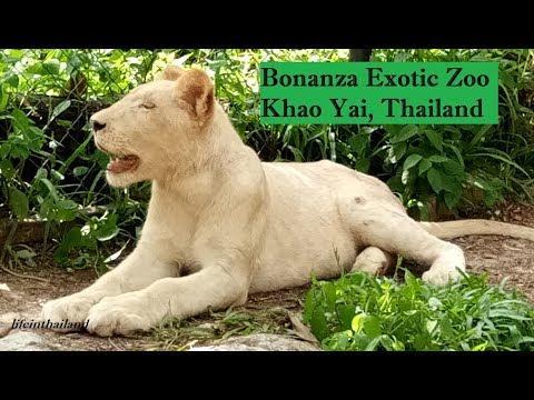 Bonanza Exotic Zoo Tour, Khao Yai, Thailand.