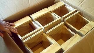 Button Quail Nest Boxes Kevin McGrath Sent  Me..:)