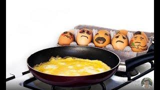 Как вкусно пожарить яйца