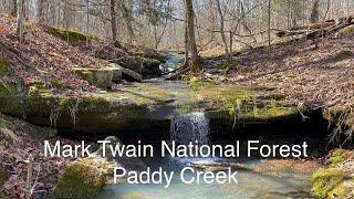 Hiking Missouri's Mark Twąin National Forest/Paddy Creek Wilderness/Big Piney Trail