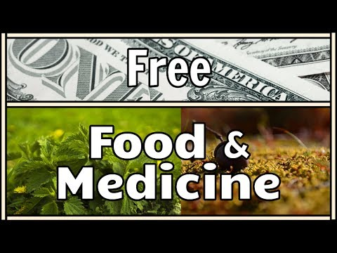 Learn to Get Food and Medicine For Free