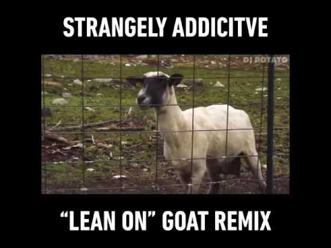 Singing Goat (Lean on Song)