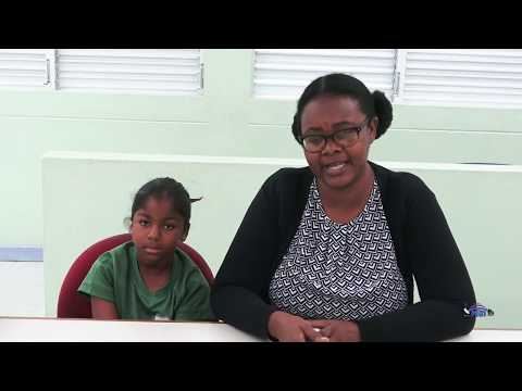 Supporting online learning in the Barbadian educational system