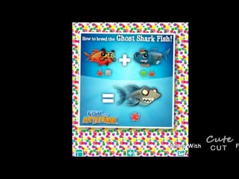 How To Breed Ghost Shark Fish In Fish With Attitude
