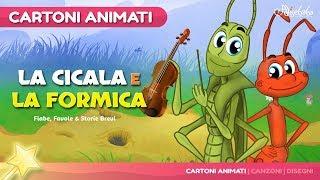 La Cicala e la Formica (The Grasshooper and the Ant) Cartone Animati | Storie per Bambini