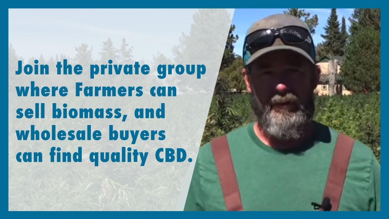 How to buy and sell your hemp to extractors and wholesale CBD buyers