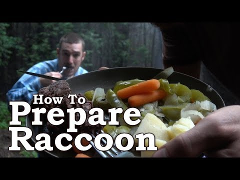 Cooking Raccoon | Wild Food Cooking | Traditional Survival Foods