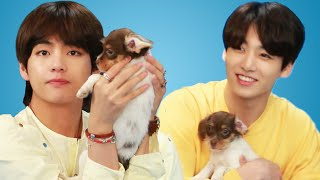 BTS with the PPS, the puppies. These adorable puppies were provided...