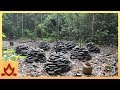 Primitive Technology  Stone Yam planters