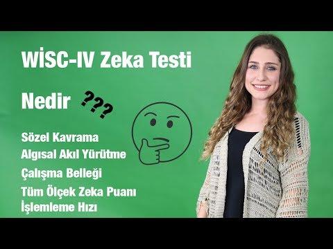 WISC-IV Zeka Testi nedir? İşte Tüm Bilgiler!