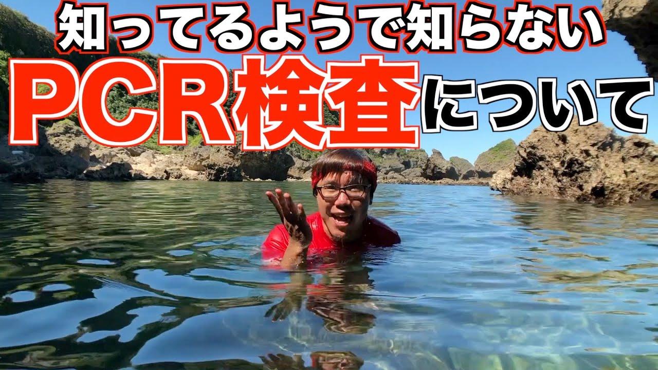 【PCR検査って結局なにしてんの?】沖縄の海で泳ぎながら解説
