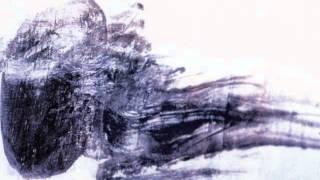 Thomas Fehlmann - Dusted