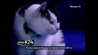Алексей Кортнев: «Никас Сафронов будет рисовать шаржи»