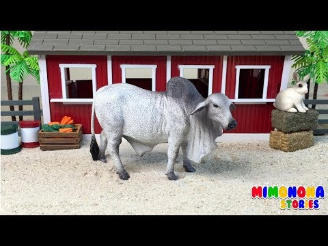 Cows And Bulls 🐮🐮for Children ✨ Videos For Kids - Mimonona Stories