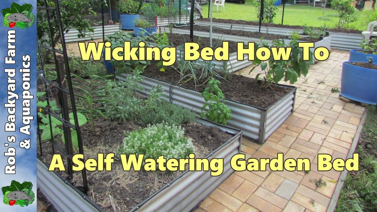 Wicking Bed How To A Self Watering