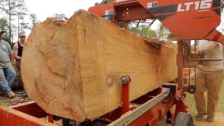 Massive Pine Log With An Unbelievable Heart
