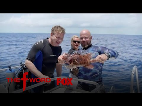 Gordon Ramsay Hunts For Lionfish To Cook | Season 1 Ep. 4 | THE F WORD
