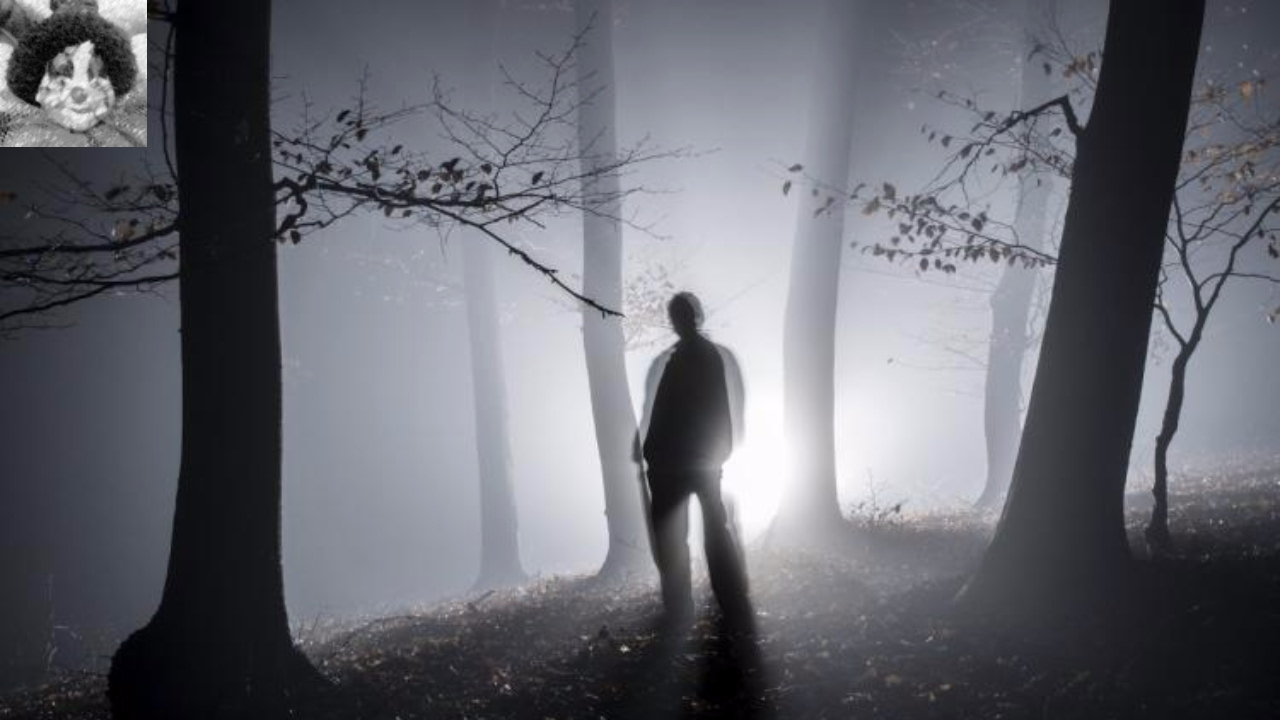 4 TRUE Unsettling 'Lets Not Meet' Stories from Reddit | Creepy Stalkers and  other Psychos