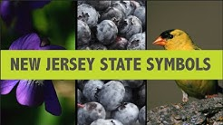 Do you know these N.J. state symbols?