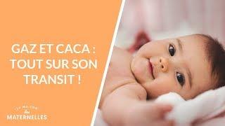 Gaz et caca : tout sur son transit ! - La Maison des maternelles #LMDM