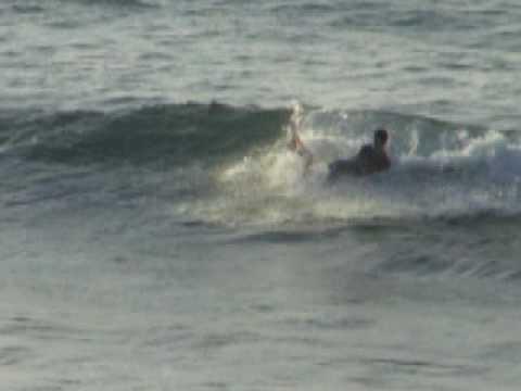 abi surf monica