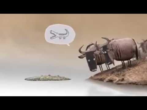 Nizret Tomas ንዝረት Animation ከ ሀ እስከ ፖ Edition thumbnail